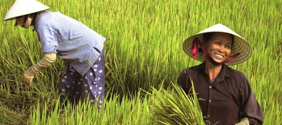 Essay about vietnam tourism